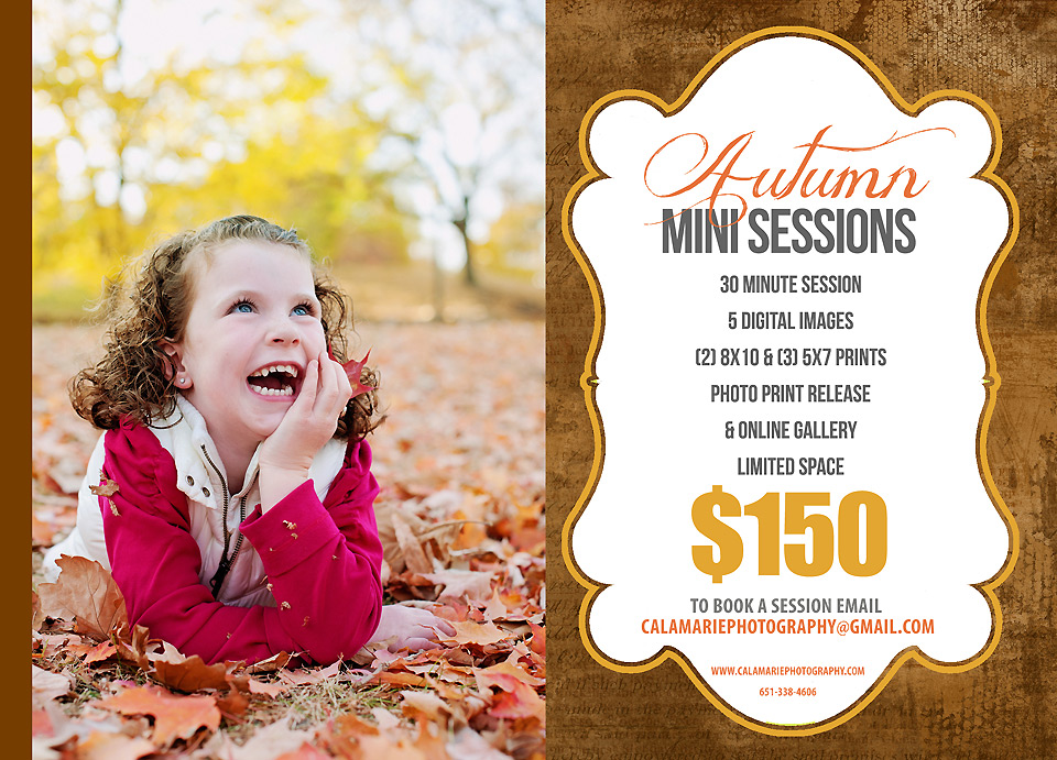FALL-MINI-SESSION2